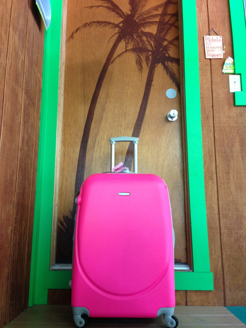 Hubcap Pink Suitcase